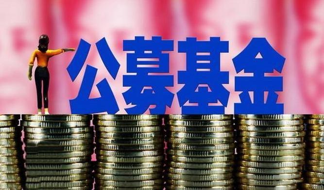 公募资管规模创新高 次新基金摘得股基桂冠 - 金评媒