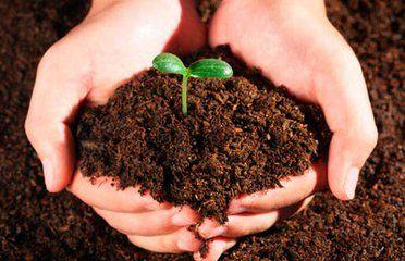 超1/3财险公司涉足农业保险