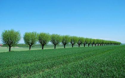 十大角度看众筹如何演绎互联网+跨境农业?