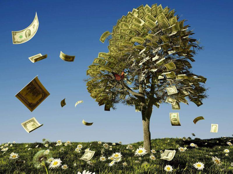 遭大额赎回 成立不到一个月长信稳势纯债大涨近28% - 金评媒