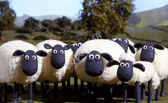 网贷平台集体反击羊毛党 从又爱又恨转至坚决反对 - 金评媒