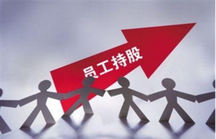 资管新规冲击第一波:上市公司员工持股计划开始叫停