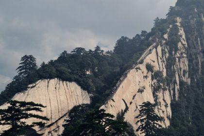 现金贷的终极命运:万水千山只剩华山一条险路?