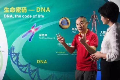 """""""梦想股""""华大基因IPO涉嫌造假,泡沫破裂市值蒸发掉250亿"""