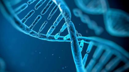 英特尔为区块链在基因序列中的应用申请专利