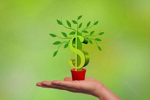 评论:IPO绿色通道不是东北企业的救命稻草 - 金评媒