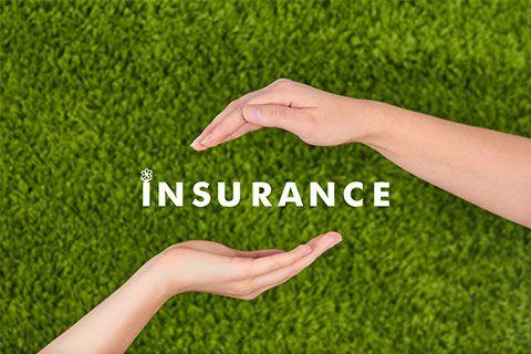 30余家互联网保险平台一年融资逾10亿元 部分业务涉及互联网保险但无牌照 - 金评媒