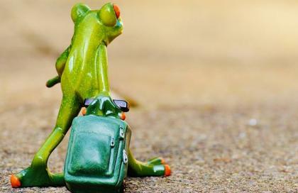 独家对话《旅行青蛙》日本团队:我们被中国吓到了