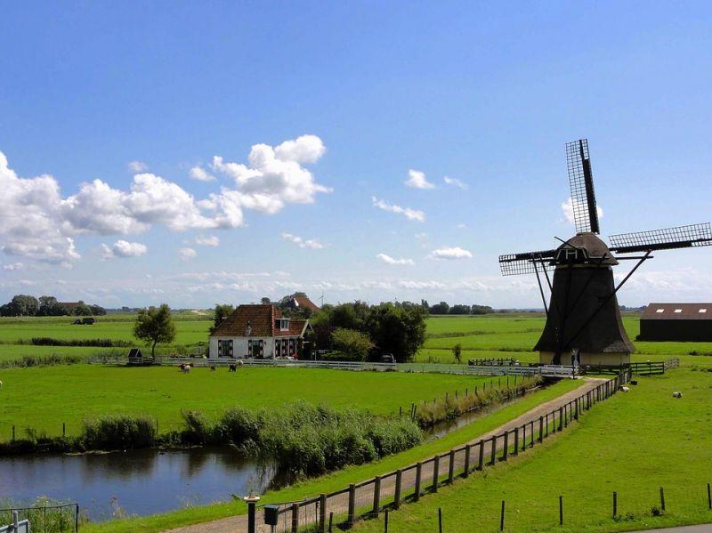 荷兰央行将大力扶持区块链落地 - 金评媒
