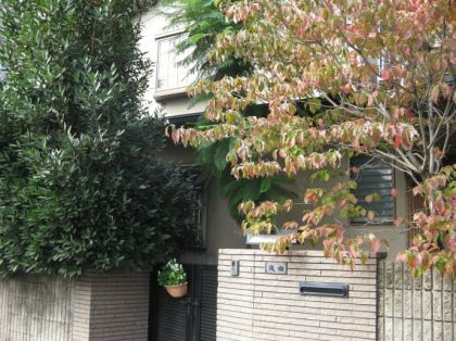随随便便买上一条街 日本或成中国炒房团的热门地
