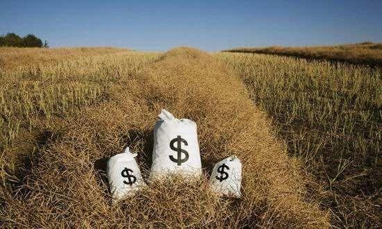 """中央一号文""""普惠金融重点要放在乡村"""",提非存款类放贷组织条例 - 金评媒"""