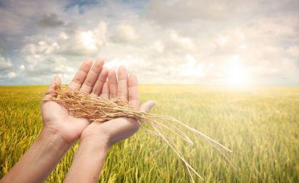 农村互联网金融有哪些难啃的痛点?