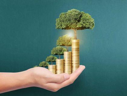 上市公司理财:发挥资源配置功能 风险整体可控