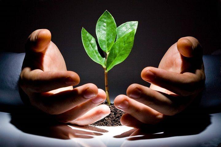 周延礼:保险业绿色投资规模达6854亿 - 金评媒