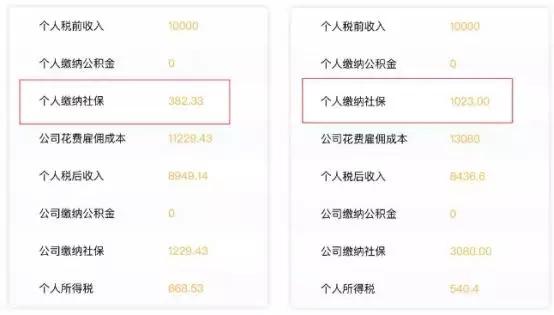 shebao 2.webp.jpg