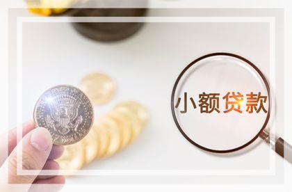 中贷协专职副会长白雪梅:小贷公司减少是优胜劣汰的过程