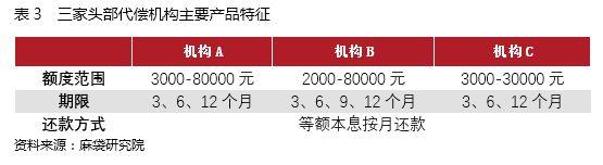 表3 三家头部代偿机构产品特征.JPG
