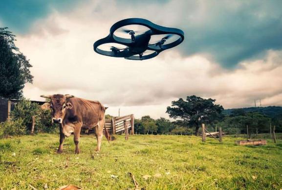 巨头们AI的角力战正向农村渗透 - 金评媒