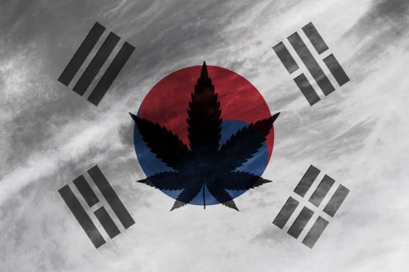 伯格曼推荐 | 大麻:韩国基金买入 我们套现离场 - 金评媒